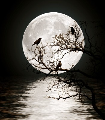 my moon!
