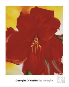 Red Amaryllis, by Georgia O'Keefe via Art.com
